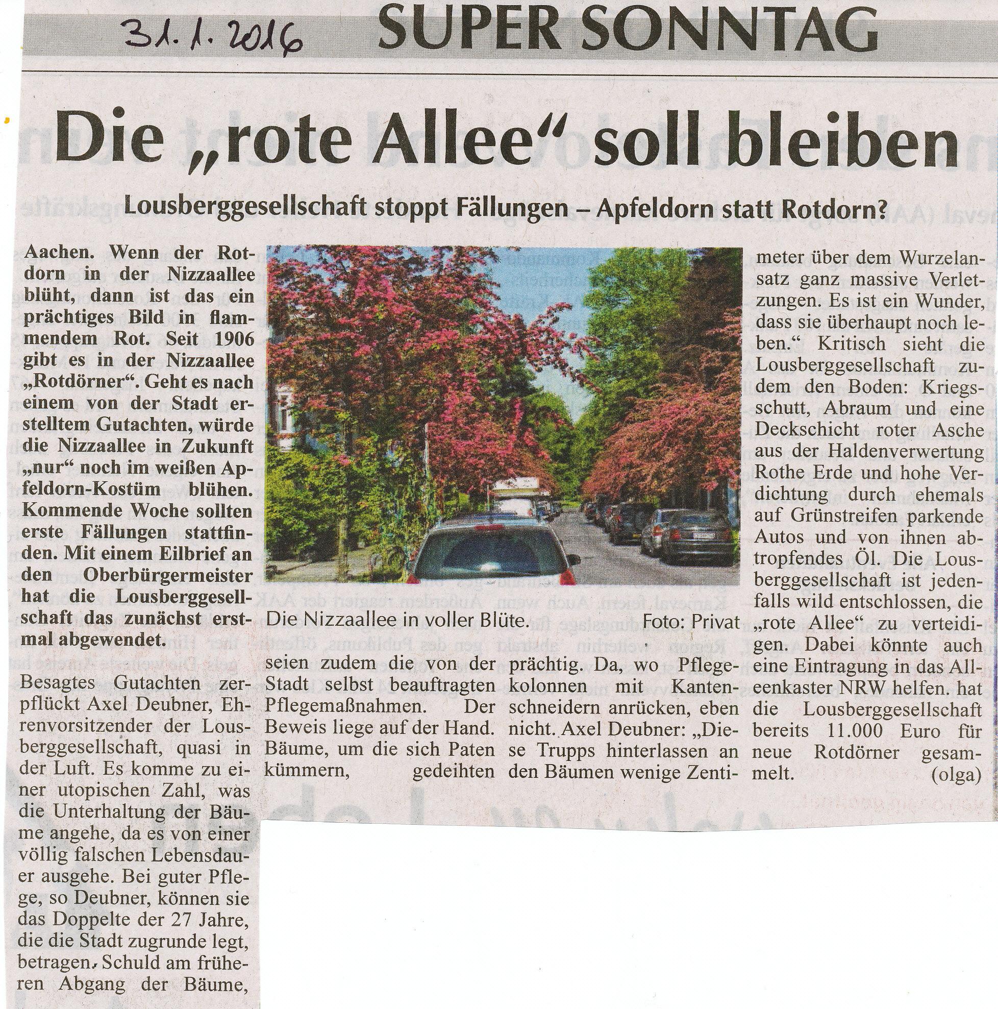"""mit freundlicher Genehmigung von SuperSonntag: """"Die rote Allee soll bleiben"""" vom 31.01.2016"""